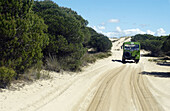 4x4 vehicle between the Dunas móviles (moving dunes) and corrales (groups of pine trees encircled by dunes). Doñana National Park. Huelva province. Spain
