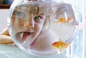 rious, Distorted, Distortion, Face, Faces, Female, Fish, Fishbowl, Fishbowls, Fishes, Funny, Girl, Gi