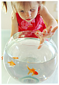 r-haired, Female, Fish, Fishbowl, Fishbowls, Fishes, Girl, Girls, Glass, Home, Human, Indoor, Indoors
