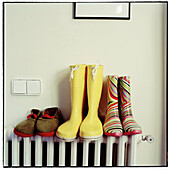 Arrangement, Color, Colour, Concept, Concepts, Different, Footgear, Footwear, Indoor, Indoors, Inside, Interior, Order, Pair, Pairs, Radiator, Radiators, Rubber boot, Rubber boots, Still life, Style, Three, Weather, B75-414946, agefotostock