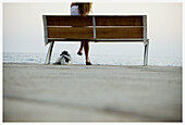 Adult, Adults, Animal, Animals, Anonymous, Back view, Bench, Benches, Coast, Coastal, Color, Colour, Companion, Companions, Contemporary, Daytime, Dog, Dogs, Exterior, Female, Horizon, Horizons, Human, Leisure, Lying down, Mate, Mates, One, One animal, O
