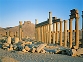 Palmyra ruins, remains of the 1200 m. colonnade edging the cardo (main road in Roman cities). Syria