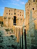 Citadel entrance at dusk. Aleppo. Syria