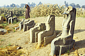 Alignment of statues along the ancient road from Karnak Temple to the city . Luxor. High Egypt. Egypt