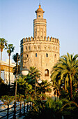 13th Century, Andalucia, Andalusia, Architecture, Art, Arts, Building, Buildings, Cities, City, Cityscape, Cityscapes, Color, Colour, Daytime, Europe, Evening, Exterior, Landmark, Landmarks, Outdoor, Outdoors, Outside, Palm, Palm tree, Palm trees, Palms,