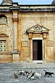 Akrotiri monastery. Crete. Greece