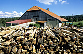 Saw Mill. Wood industry. Doubs. Franche-Comte. France