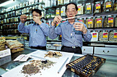 Traditional Herbalists at work in their shop. Wanchai. Hong Kong. China