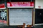 Drunk homeless lying down by a shop window. Papeete. Tahiti island in the Windward islands. Society archipelago. French Polynesia