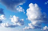 Ätherisch, Atmosphäre, Außen, Blau, Blauer Himmel, Endlos, Farbe, Fliegen, Flucht, Flüchtig, Glatt, Himmel, Hintergrund, Hintergründe, Horizontal, Landschaft, Landschaften, Licht, Luft, Natur, Raum, Ruhe, ruhig, sich Entspannen, Tageszeit, Traum, Unbegre