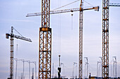Building, Buildings, Cities, City, Color, Colour, Construction, Construction site, Construction sites, Crane, Cranes, Daytime, Economy, Engineering, Exterior, Horizontal, Industrial, Industry, Outdoor, Outdoors, Outside, Silhouette, Silhouettes, Under co