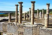 Ruins of forum, old roman city of Baelo Claudia (II BC). Tarifa. Cadiz province. Spain