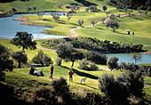 Golf course. Costa del Sol, Málaga province. Spain