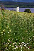 Blick über Wiese mit Kirchturm von Alsen am Alsensjön, Jämtland, Nordschweden