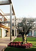 Architektur, Aussen, Außen, Baum, Bäume, Farbe, Garten, Gärten, Gebäude, Haus, Häuser, Modern, Niemand, Tageszeit, Vertikal, B29-315427, agefotostock