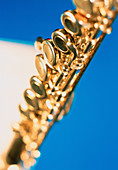 Art, Arts, Close up, Close-up, Closeup, Color, Colour, Detail, Details, Flute, Flutes, Golden, Indoor, Indoors, Interior, Metallic, Music, Musical instrument, Musical instruments, Object, Objects, One, One item, Thing, Things, Vertical, Wind instrument,