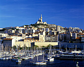 Old port & cathedral, Marseilles, France.