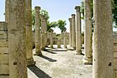 Ruins of old Roman city of Mactaris (Makthar). Tunisia