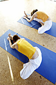 Colour, Companion, Companions, Contemporary, Exercise, Exercises, Female, Fit, Flexibility, Flexible