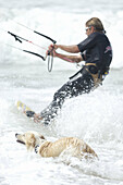 Kiteboarder and dog