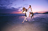 Activity, Adult, Adults, Animal, Animals, Beach, Beaches, Color, Colour, Contemporary, Dusk, Equitation, Escape, Escapes, Escaping, Exterior, Female, Free, Freedom, Gallop, Galloping, Horizon, Horizons, Horizontal, Horse, Horsemanship, Horses, Human, Lei