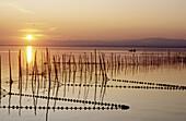 La Albufera Lake in Valencia province. Comunidad Valenciana, Spain