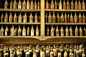 Bodega Gonzalez Byas, show room with old sherry, brandy and wine bottles. Jerez de la Frontera. Cadiz province. Andalusia. Spain