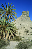 Bare ridges of eroded sandstone and palm trees in the Tabernas Desert, Europe s only true desert. Province of Almería, Andalucía, Spain.