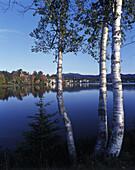 Fall foliage, Mirror Lake, Lake Placid, Adirondack Park, New York, USA