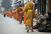 Monks collecting alms at sunrise, Luang Prabang. North Laos