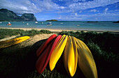 Kayaks lying on Lagoon Beach, Lord Howe Island, Australia