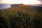 Yasawa Island at sunrise, Fiji, South Sea