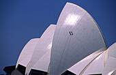 Two workers inspecting the tiles of the roof of the Opera House, Sydney, New South Wales, Australia