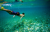 Young man snorkeling in the clear waters surrounding the island, Heron Island, Great Barrier Reef, Australia