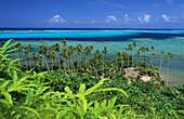 Reef and lagoone on the west coast, Raiatea, French Polynesia, South Sea