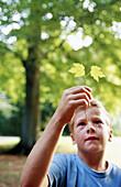-haired, Hold, Holding, Human, Infantile, Kid, Kids, Leaf, Leaves, Leisure, Look, Looking, Male, Natu