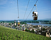 Germany, Rüdesheim, Hesse, city view, Rhine landscape, cable railway to the Niederwald monument
