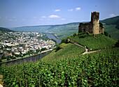 Germany, Bernkastel-Kues, Moselle, Rhineland-Palatinate, Landshut Castle, Moselle landscape, vineyards, wine growing area