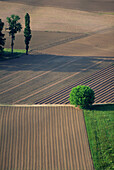 Aerial view, Aerial views, Agriculture, Color, Colour, Country, Countryside, Crop, Crops, Daytime, Dordogne, Europe, Exterior, Farm, Farming, Farms, Field, Fields, France, Nobody, Outdoor, Outdoors, Outside, Rural, Vertical, C57-77088, agefotostock