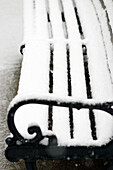 Alone, Bench, Benches, Clean, Cold, Coldness, Color, Colour, Concept, Concepts, Contemporary, Daytime, Detail, Details, Empty, Exterior, Fresh, Frost, Frozen, Gray, Ice, Isolated, Morning, New, Nobody, Outdoor, Outdoors, Outside, Park, Park bench, Parks,