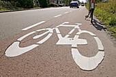 Bike sign on ground bike lane.