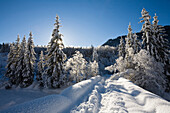 Snowcovered winterlandscape in Upper Bavaria, Germany