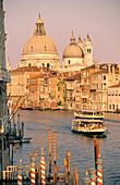 Santa Maria della Salute from Gran Canal. Venice. Italy