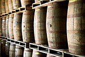 Bahamas, New Providence Island, Coral Harbour: Bacardi Rum Factory, Rum Aging Casks