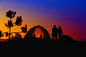 A couple watching the sunset, Tent, camping, Sardegna, Sardinia,  Italy, Europe, mr