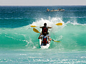 Two men paddling over a wave, Sandy Bay Beach, Cape Town, South Africa, Africa, mr