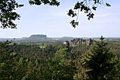 Elbsandsteingebirge, Elbe Sandstone Mountains, near Rathen, Saxony, Germany