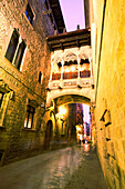 Barcelona,Barri Gotic Carrer del Bisbe at twilight