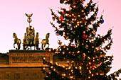 Berlin, Brandenburger Tor,Pariser Platz mit Weihnachtsbaum