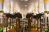Dubai International Airport Dubai United Arab Emirates ,Sheikh Rashid Terminal  terminal , palm trees